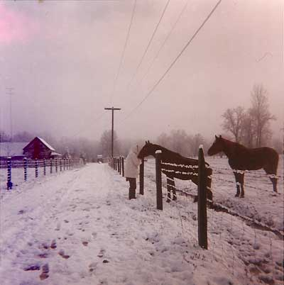 1964 snow in Potter Valley